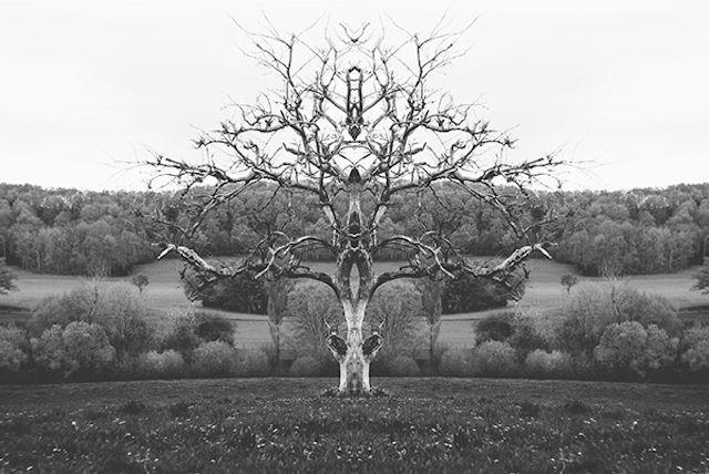 Mirrored Monochromatic Landscapes