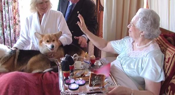 Royal Home Videos