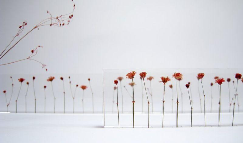 Botanical School Supplies