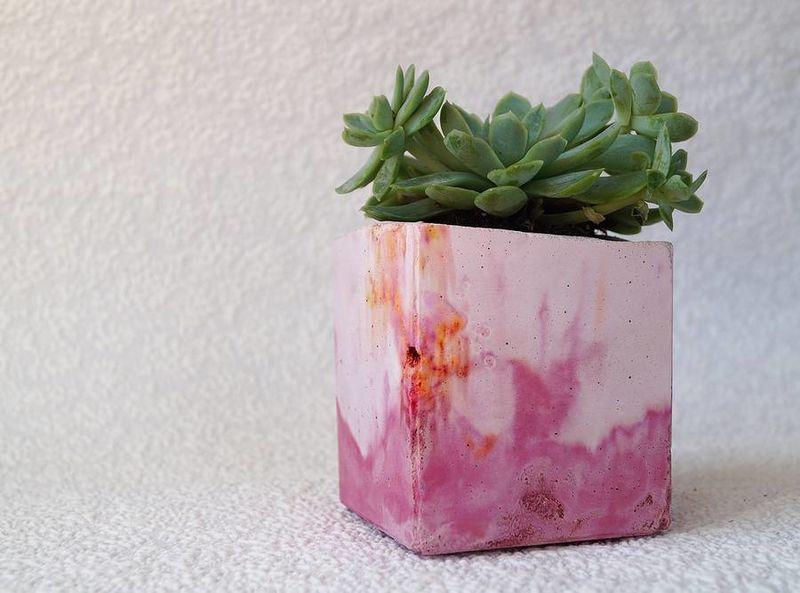 Multi-Hued Vases