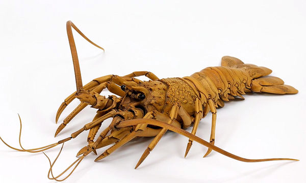 Realistic Lobster Sculptures