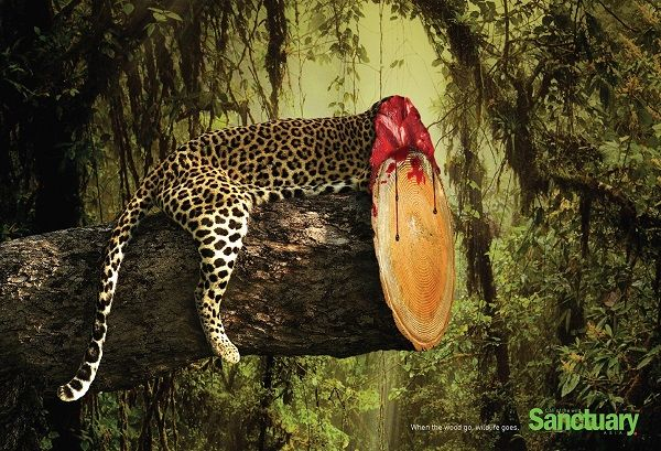 Headless Wildlife Campaigns