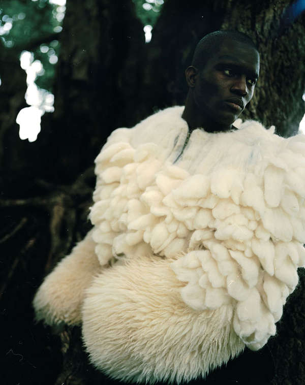 Feathered Forest Editorials