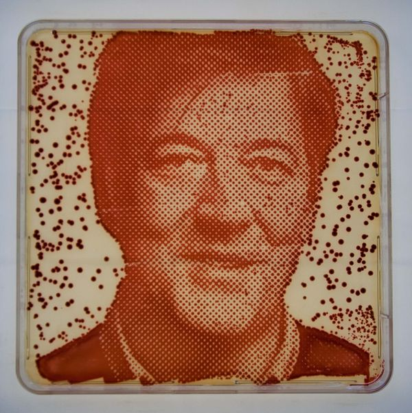 Bacteria-Grown Celebrity Portraits