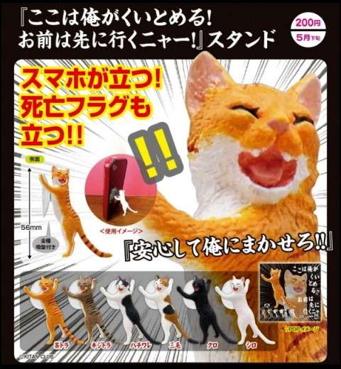 Cat Scratch Smartphone Stands
