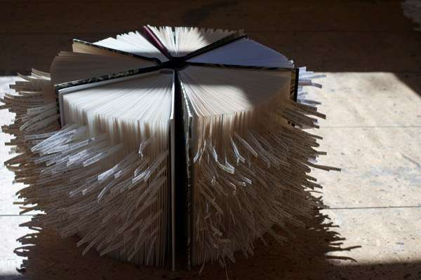 Poetic Paper Art