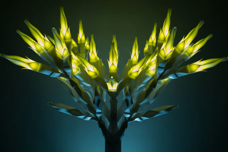Arboreal Lighting Sculptures