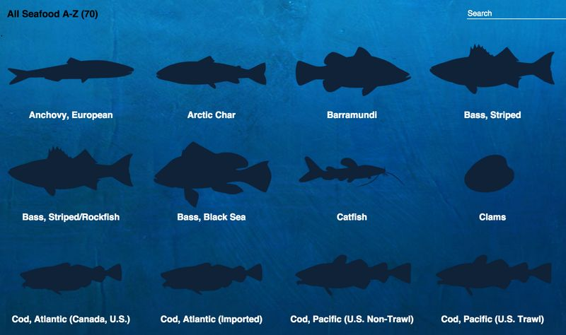 Sustainable Fish Charts