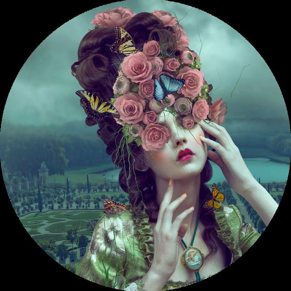 Gothic Floral Illustrations