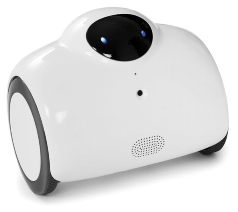 Remote-Controlled Security Robots