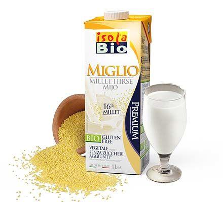 Dairy-Free Millet Milks