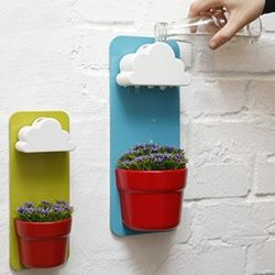 Functional Self-Watering Pots