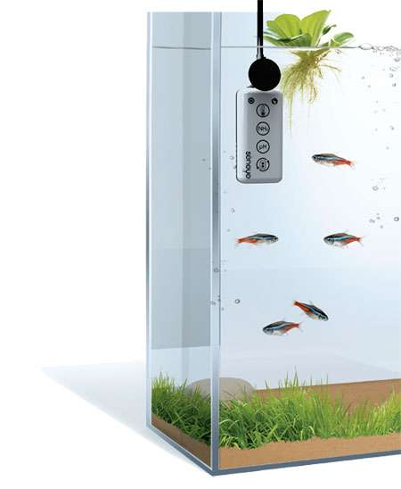 Seneye Aquarium