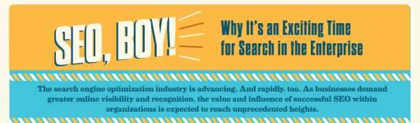 seo boy infographic