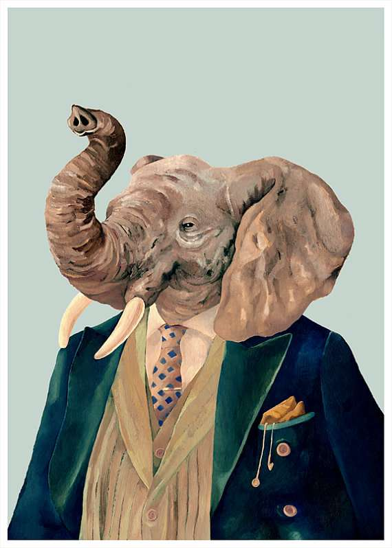 Debonair Wildlife Portraits