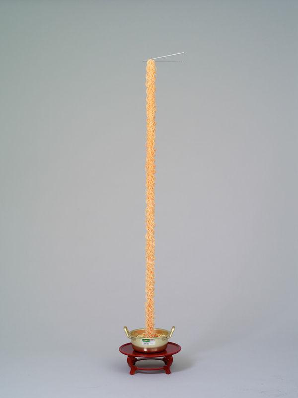 Delectable Noodle Sculptures