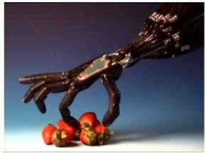 Human-Like Mechanical Limbs