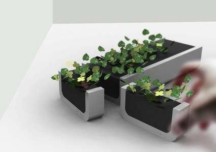 Dirtless Plants