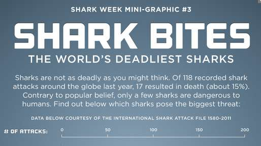 Shark Bites: The World's Deadliest Sharks