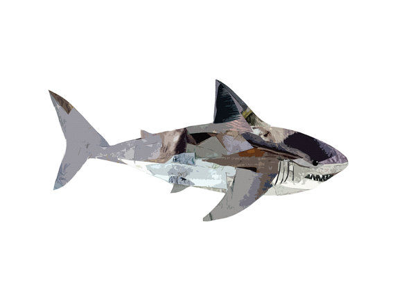 Collaged Shark Illustrations