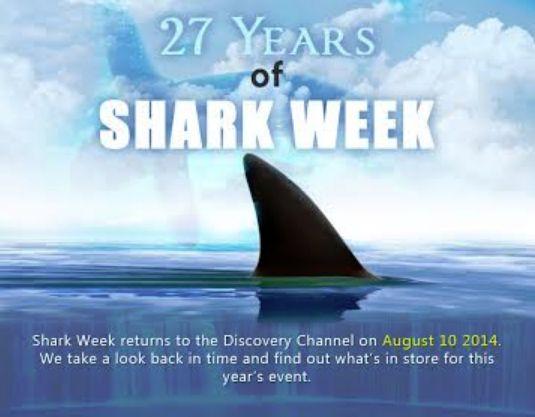 Spectacular Shark Infographics
