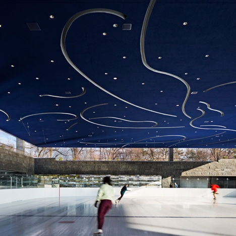 Veiled Ice Rinks
