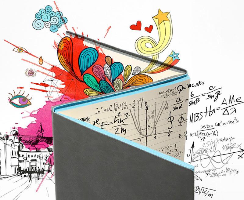 Whole Brain Notebooks