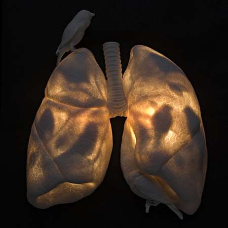 Glowing Lung Sculptures