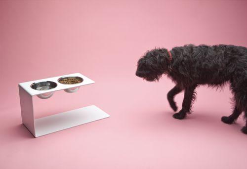 Ergonomic Canine Feeders