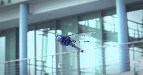 Whimsical Robotic Dragonflies