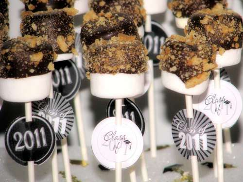 Smore Pops by Big Bears Wife