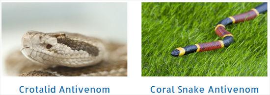 Veterinary Snake Antidotes