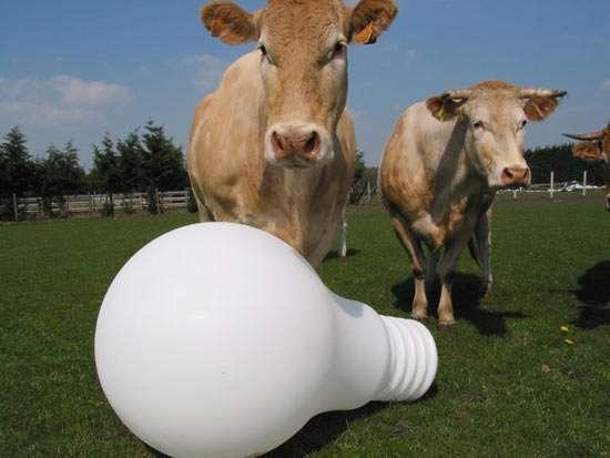 Giant Light Bulb Shaped Lamps