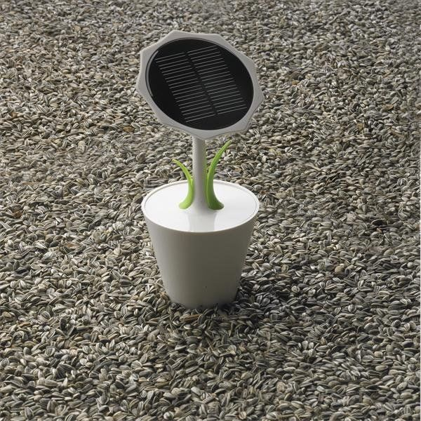 Solar Sunflower Chargers