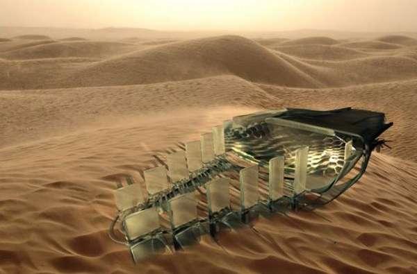 Eco-Desert Watering Holes