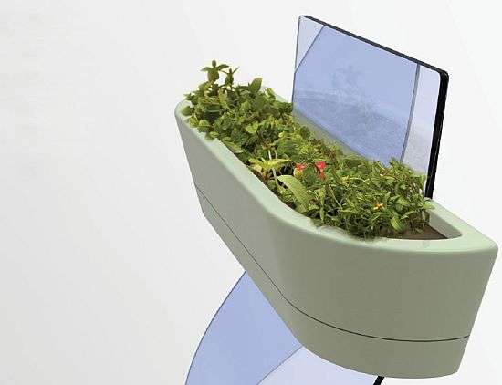 Solar-Powered Plant Pots