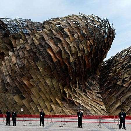 Monolithic Pine Cone Structures