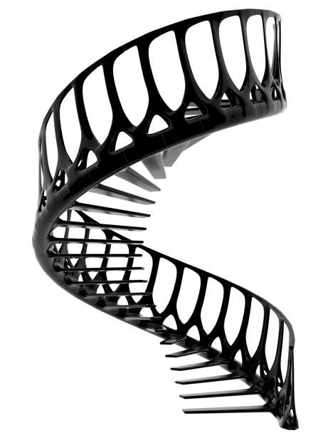 spinal staircase