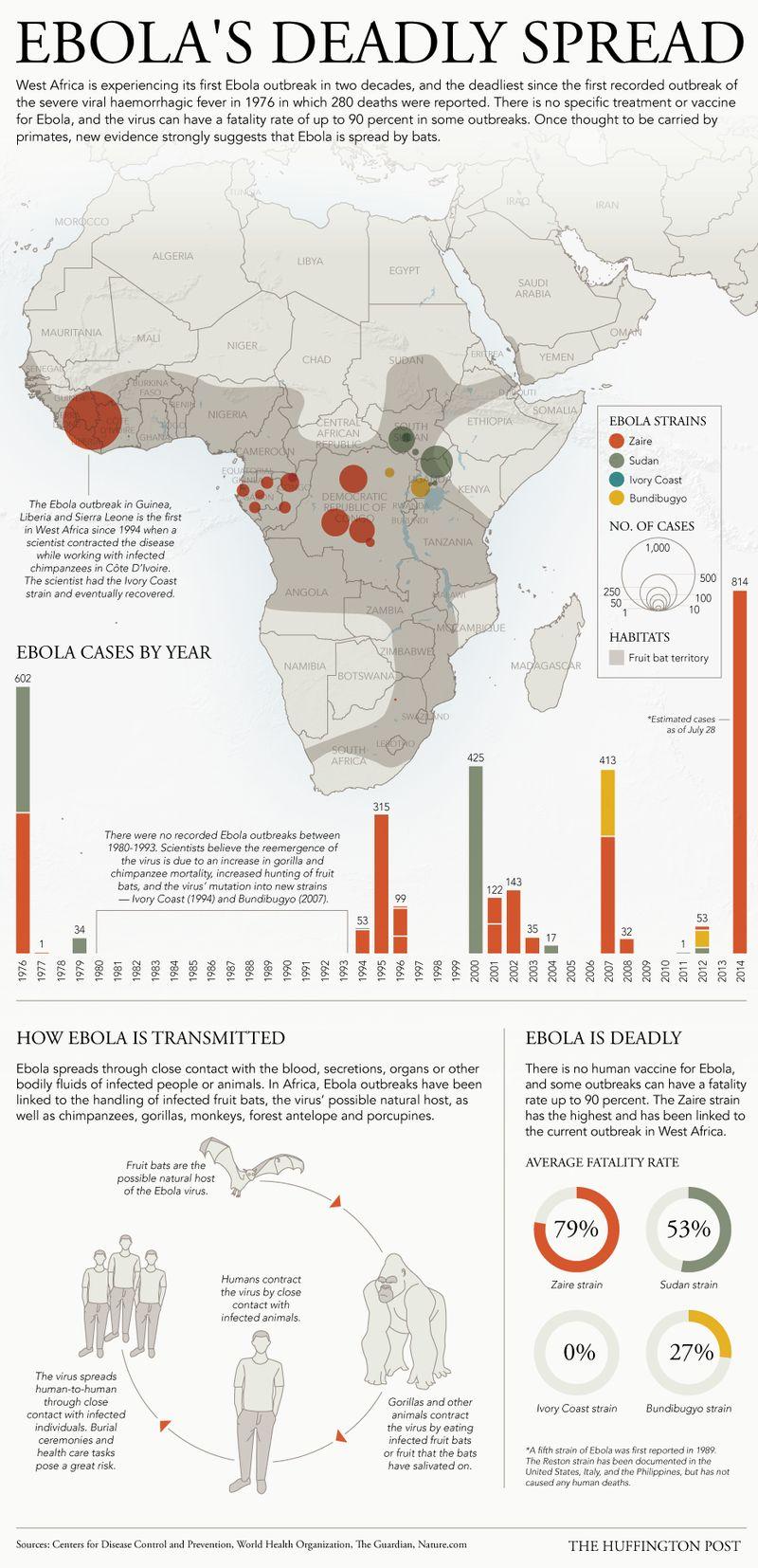 deadly disease infographics   spread of ebola