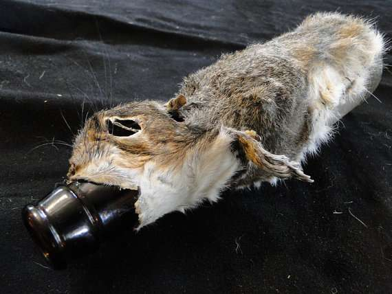 Squirrel Beer Bottle Cozy