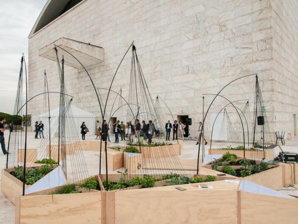 Wireframe Garden Architecture