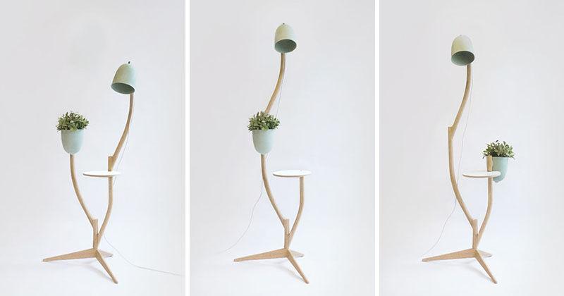 Multipurpose Organic Furniture