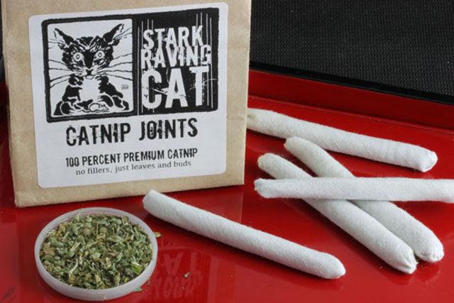 Contraband Kitty Treats