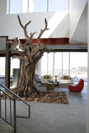 Steel Art Trees by NatureMaker