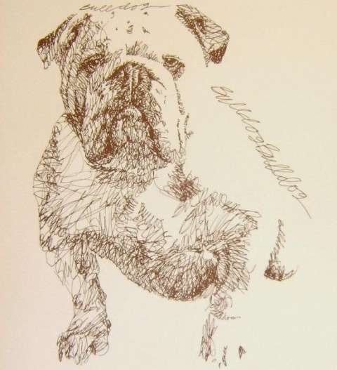 Wordy Pooch Portraits