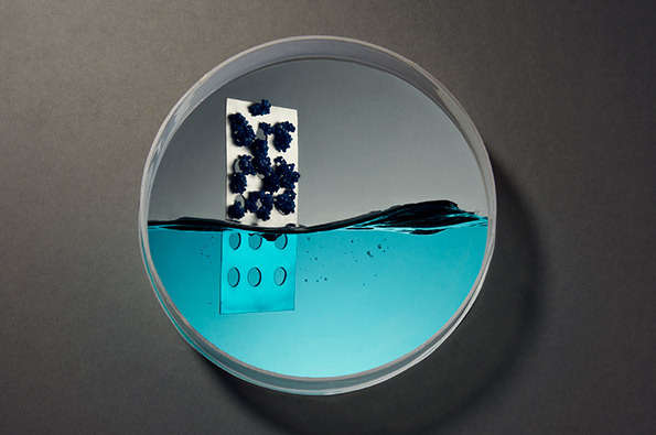 Petri Dish-Like Photography