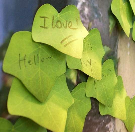 Nature-Infused Sticky Notes