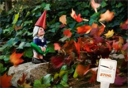 Gusty Gnome Ads