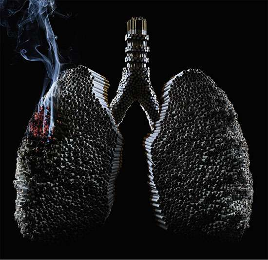 Lungs Made of Cigarettes