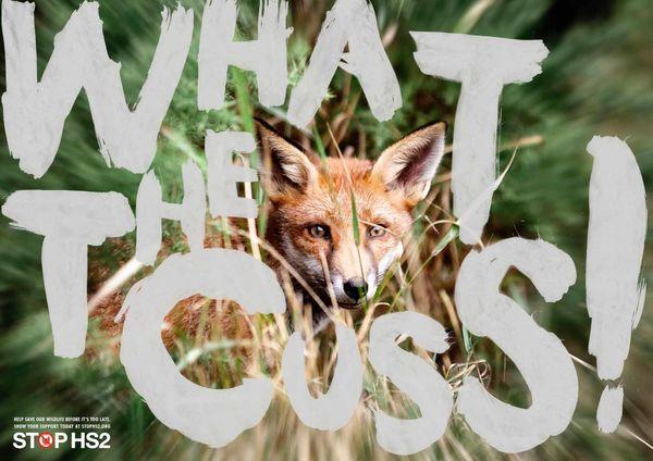 Fantastic Fox Dialogue Posters